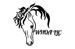 WHOA, LLC